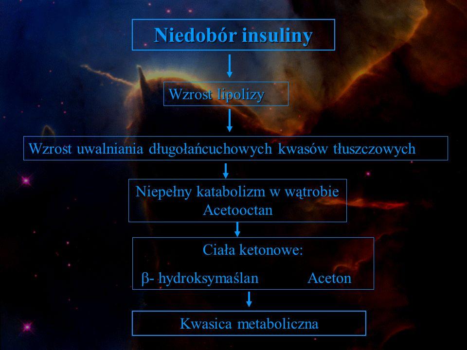 Niepełny katabolizm w wątrobie Acetooctan