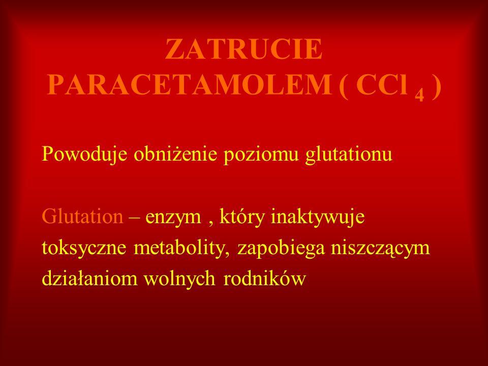 ZATRUCIE PARACETAMOLEM ( CCl 4 )
