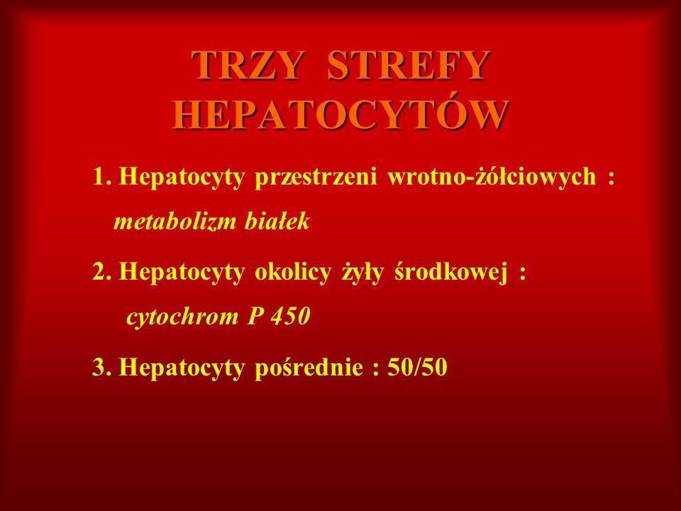TRZY STREFY HEPATOCYTÓW