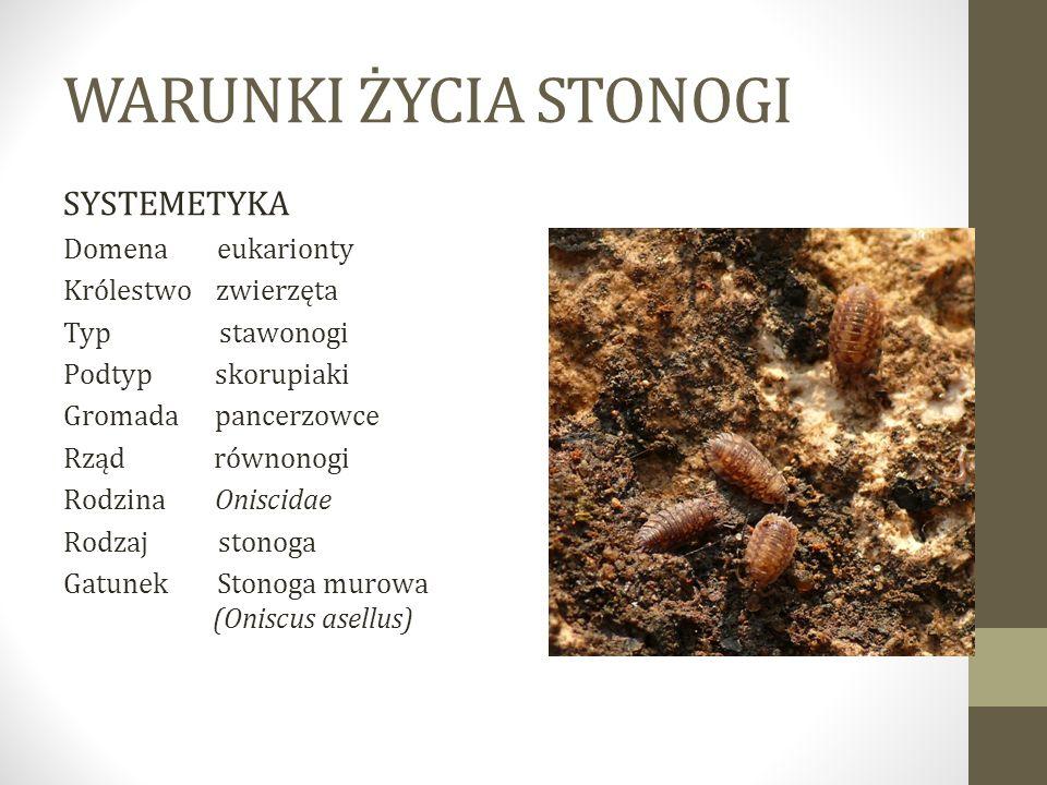 WARUNKI ŻYCIA STONOGI SYSTEMETYKA Domena eukarionty