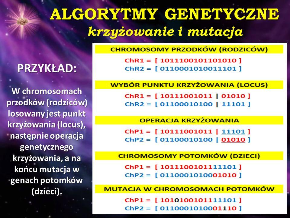ALGORYTMY GENETYCZNE krzyżowanie i mutacja