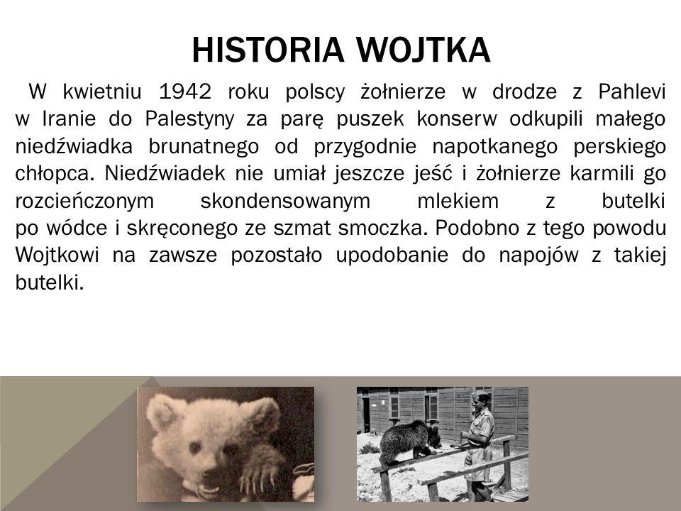 Historia wojtka