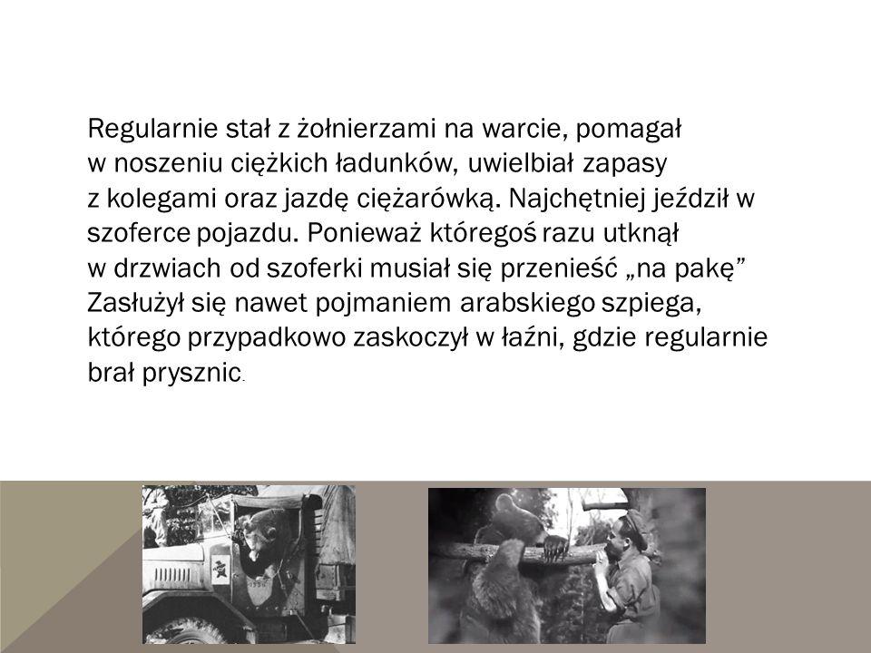 Regularnie stał z żołnierzami na warcie, pomagał w noszeniu ciężkich ładunków, uwielbiał zapasy z kolegami oraz jazdę ciężarówką.