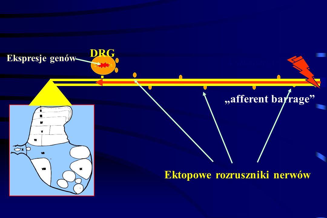 Ektopowe rozruszniki nerwów
