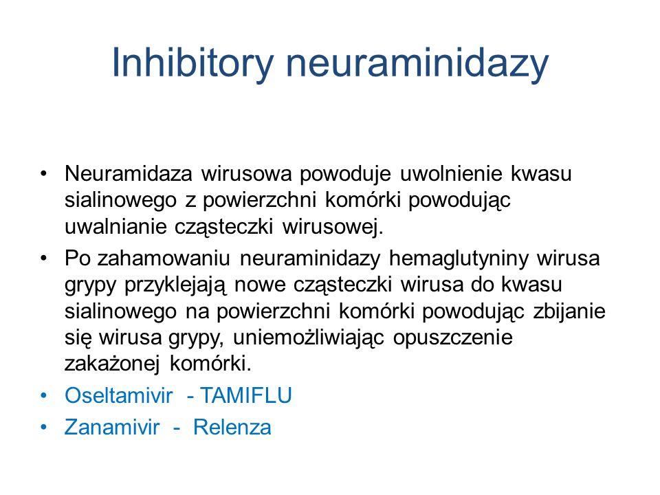 Inhibitory neuraminidazy