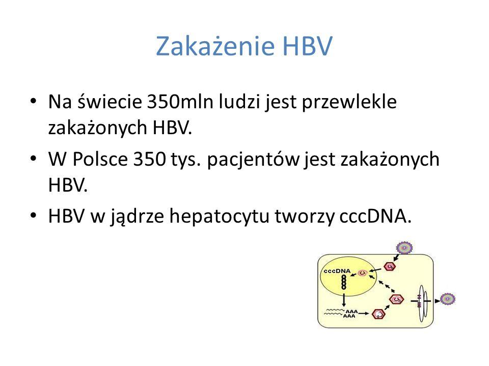 Zakażenie HBV Na świecie 350mln ludzi jest przewlekle zakażonych HBV.