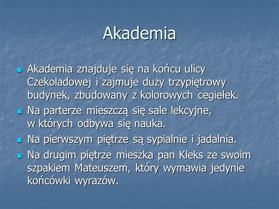 Akademia Akademia znajduje się na końcu ulicy Czekoladowej i zajmuje duży trzypiętrowy budynek, zbudowany z kolorowych cegiełek.