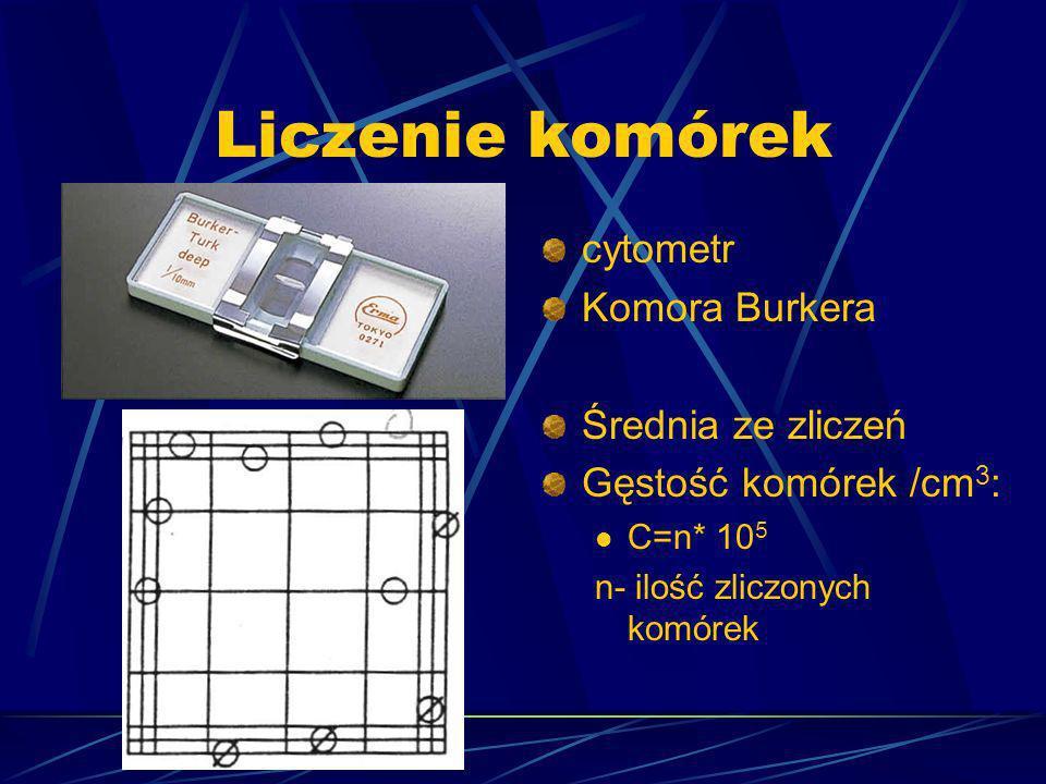 Liczenie komórek cytometr Komora Burkera Średnia ze zliczeń