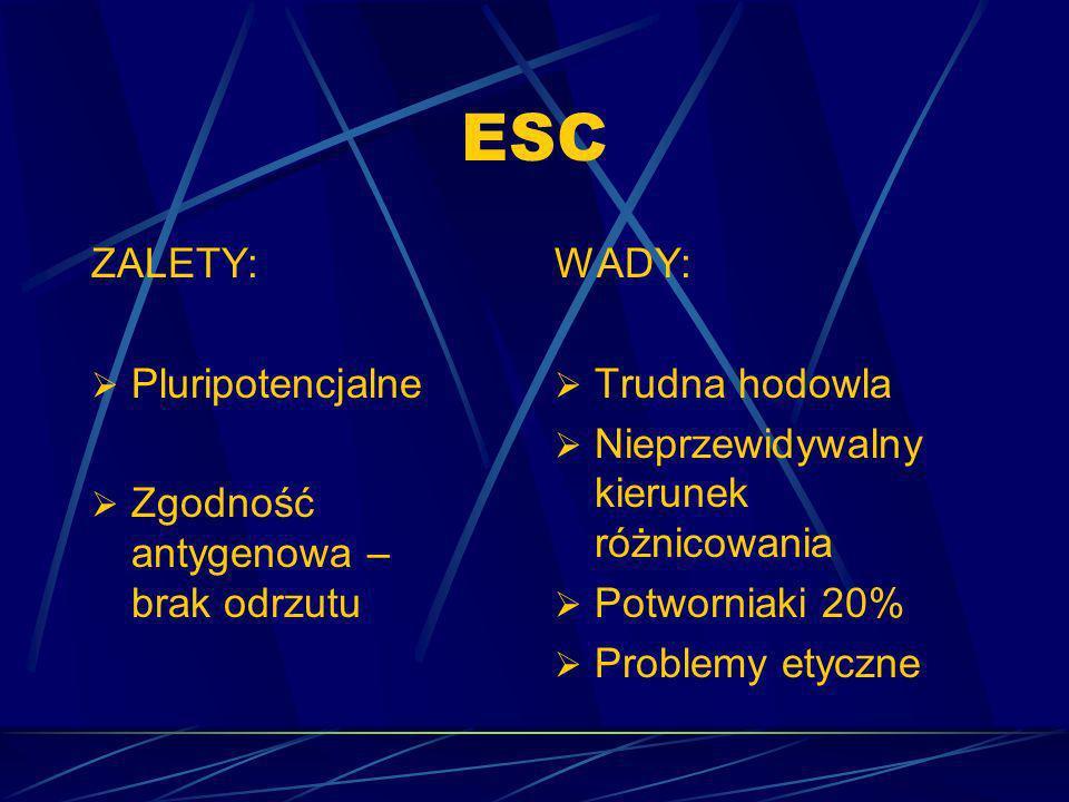 ESC ZALETY: Pluripotencjalne Zgodność antygenowa – brak odrzutu WADY: