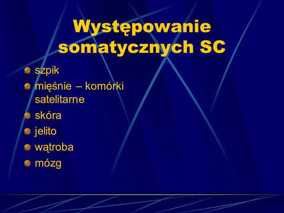 Występowanie somatycznych SC