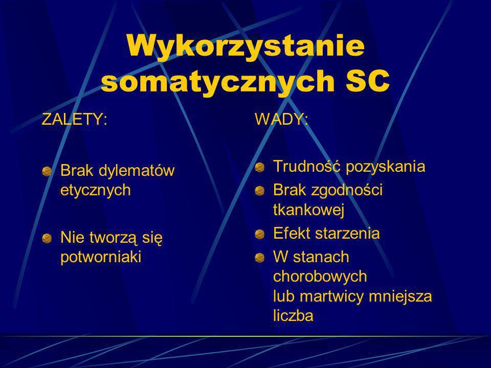 Wykorzystanie somatycznych SC