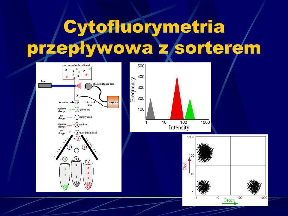 Cytofluorymetria przepływowa z sorterem