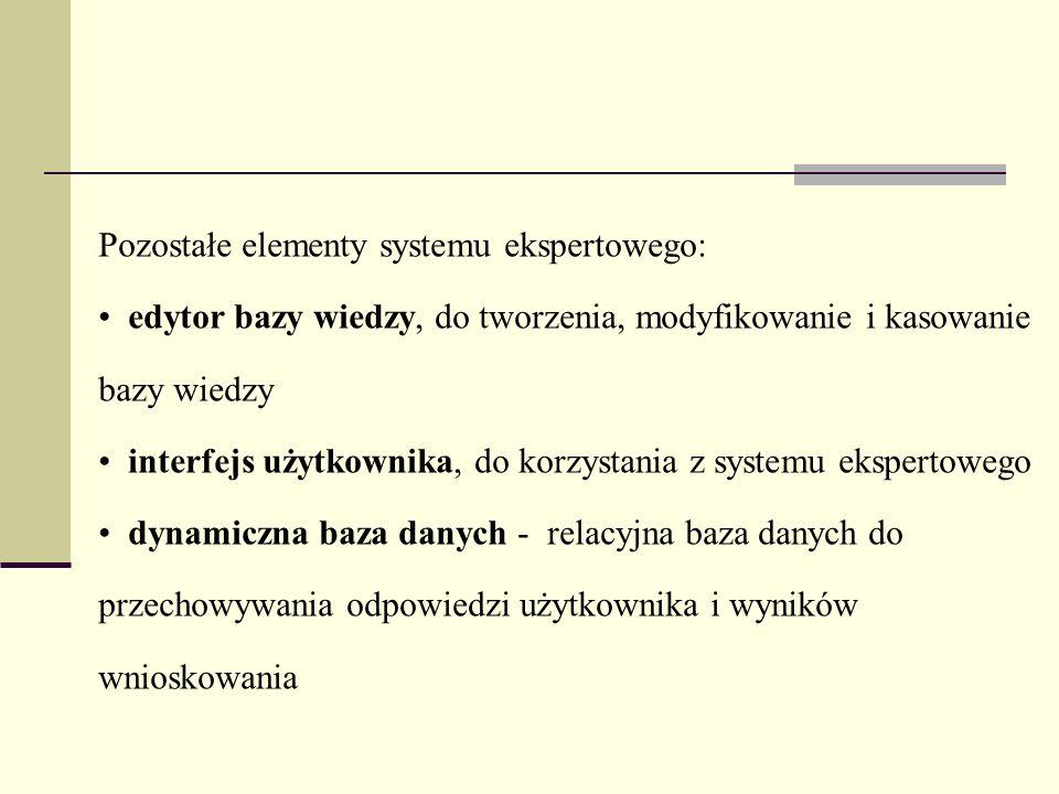 Pozostałe elementy systemu ekspertowego: