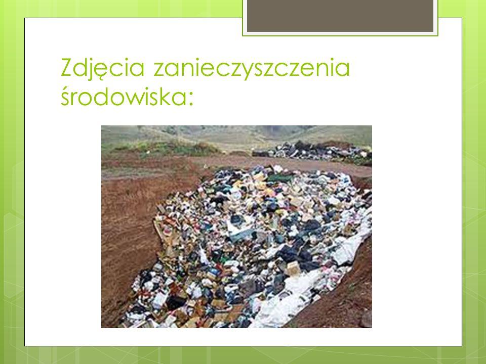 Zdjęcia zanieczyszczenia środowiska: