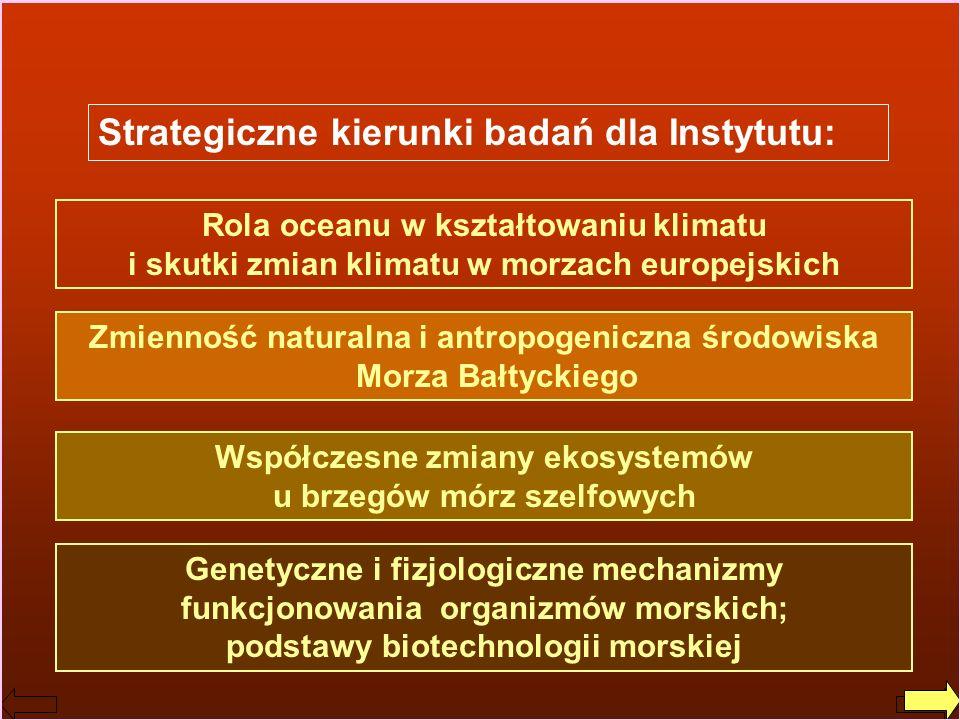 Strategiczne kierunki badań dla Instytutu: