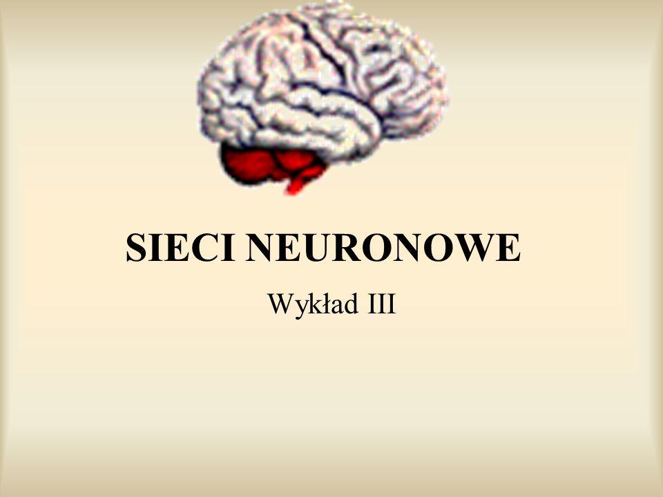 SIECI NEURONOWE Wykład III