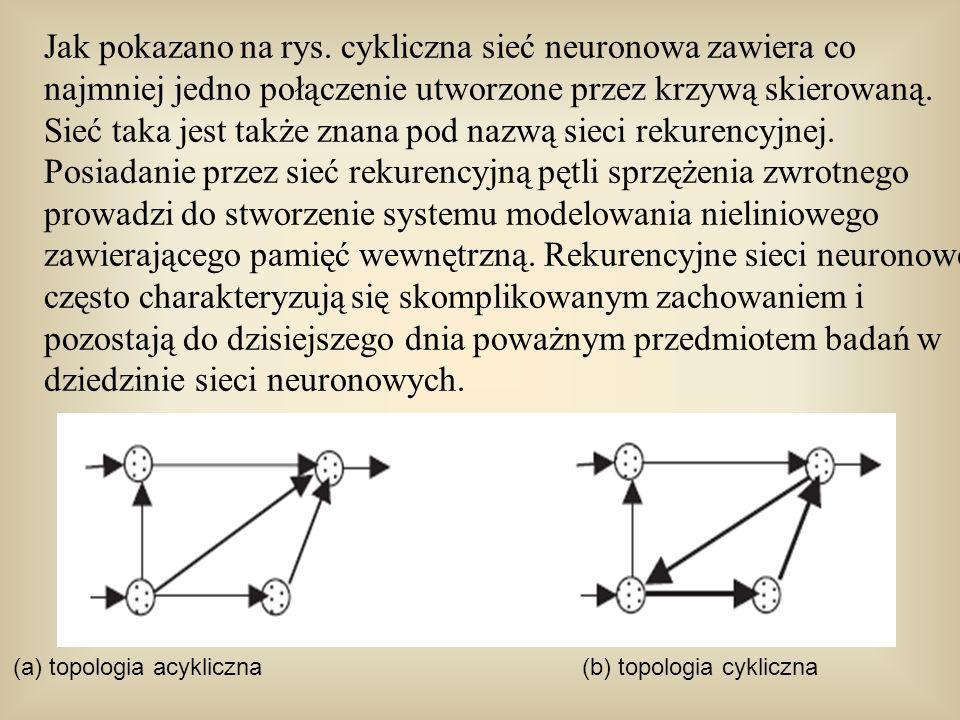 Jak pokazano na rys. cykliczna sieć neuronowa zawiera co najmniej jedno połączenie utworzone przez krzywą skierowaną. Sieć taka jest także znana pod nazwą sieci rekurencyjnej. Posiadanie przez sieć rekurencyjną pętli sprzężenia zwrotnego prowadzi do stworzenie systemu modelowania nieliniowego zawierającego pamięć wewnętrzną. Rekurencyjne sieci neuronowe często charakteryzują się skomplikowanym zachowaniem i pozostają do dzisiejszego dnia poważnym przedmiotem badań w dziedzinie sieci neuronowych.