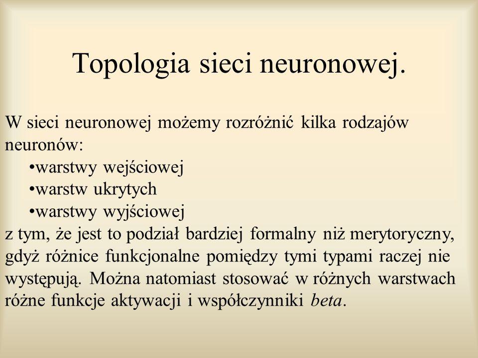 Topologia sieci neuronowej.