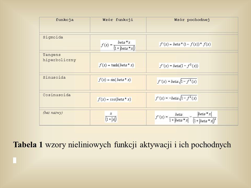 Tabela 1 wzory nieliniowych funkcji aktywacji i ich pochodnych