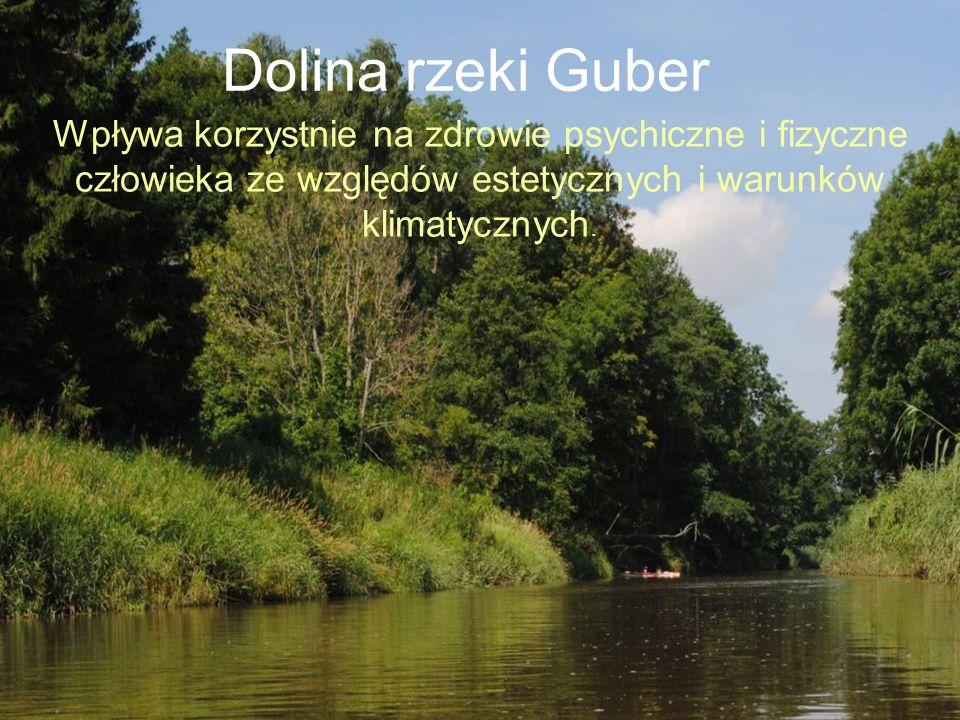 Dolina rzeki Guber Wpływa korzystnie na zdrowie psychiczne i fizyczne człowieka ze względów estetycznych i warunków klimatycznych.