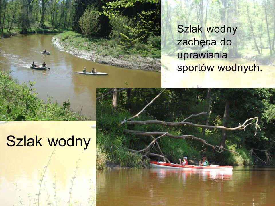 Szlak wodny zachęca do uprawiania sportów wodnych.