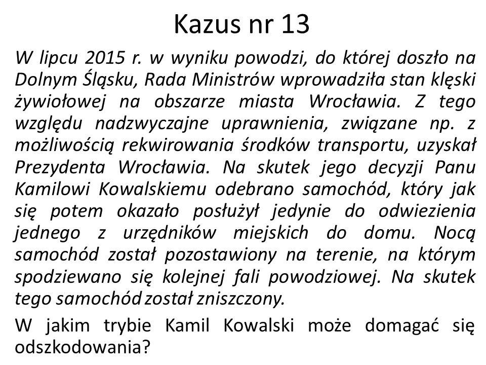 Kazus nr 13
