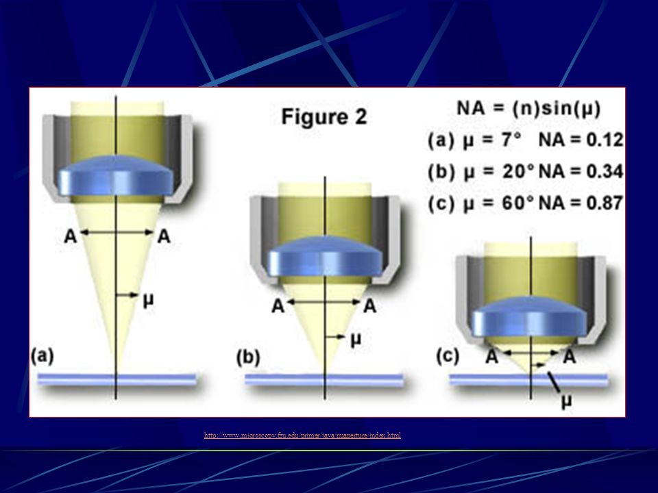 http://www.microscopy.fsu.edu/primer/java/nuaperture/index.html http://www.microscopy.fsu.edu/primer/java/nuaperture/index.html.