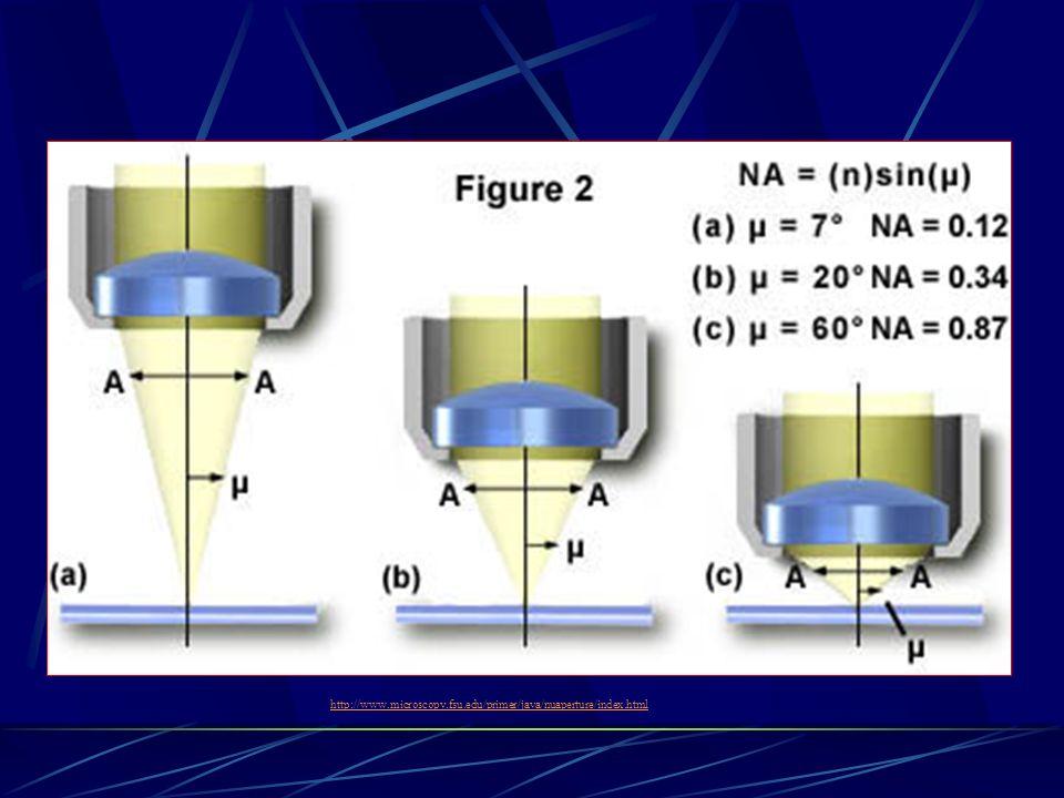 http://www.microscopy.fsu.edu/primer/java/nuaperture/index.htmlhttp://www.microscopy.fsu.edu/primer/java/nuaperture/index.html.