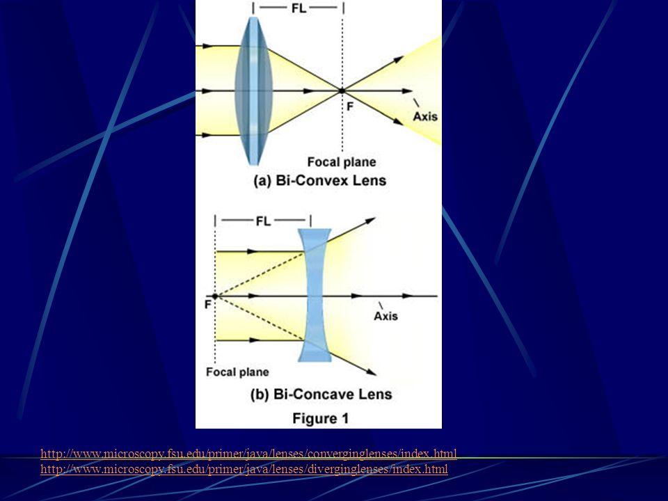 http://www. microscopy. fsu