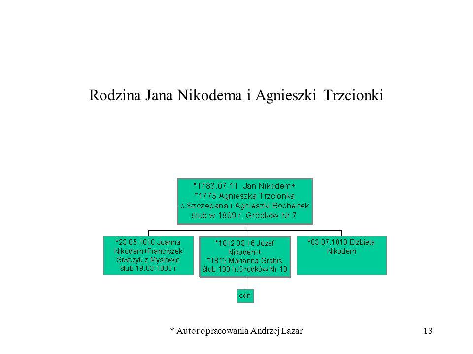 Rodzina Jana Nikodema i Agnieszki Trzcionki