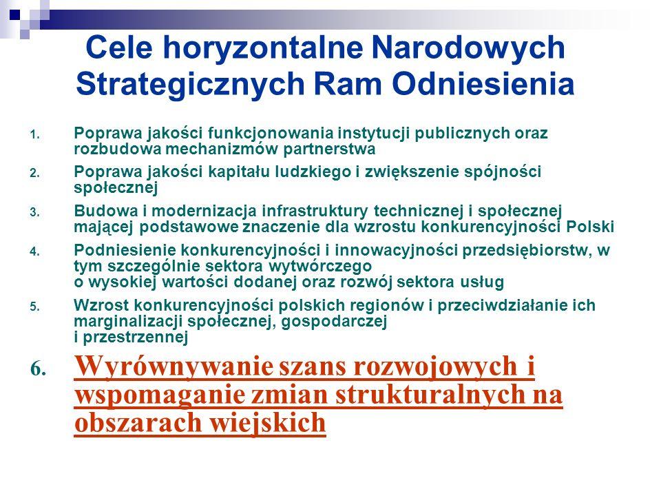 Cele horyzontalne Narodowych Strategicznych Ram Odniesienia