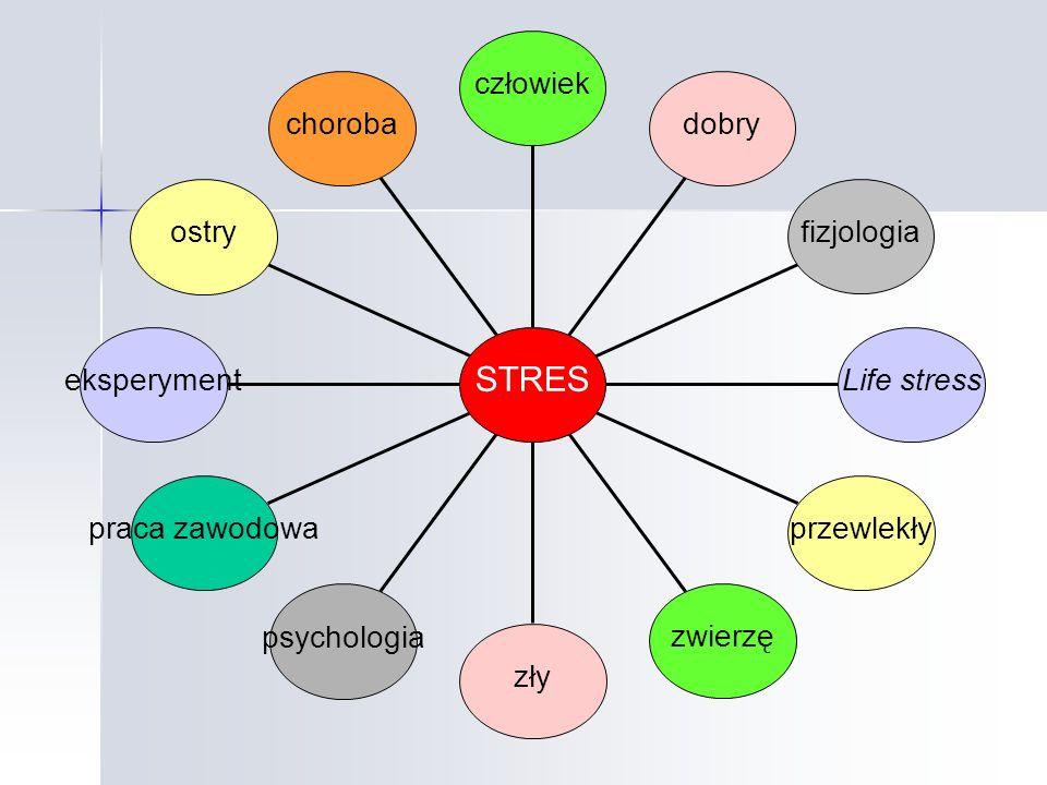 STRES choroba ostry eksperyment praca zawodowa psychologia zły zwierzę