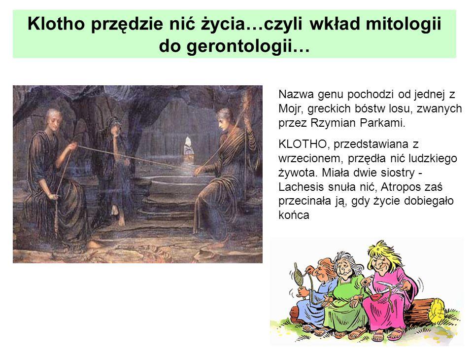 Klotho przędzie nić życia…czyli wkład mitologii do gerontologii…