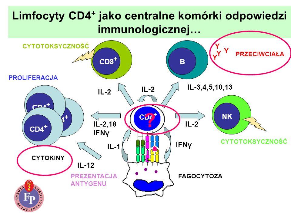 Limfocyty CD4+ jako centralne komórki odpowiedzi immunologicznej…