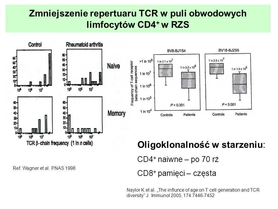 Zmniejszenie repertuaru TCR w puli obwodowych limfocytów CD4+ w RZS