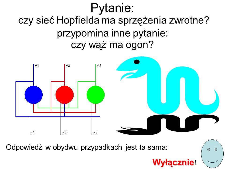 Pytanie: czy sieć Hopfielda ma sprzężenia zwrotne