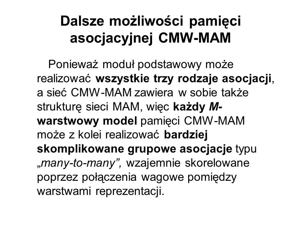 Dalsze możliwości pamięci asocjacyjnej CMW-MAM