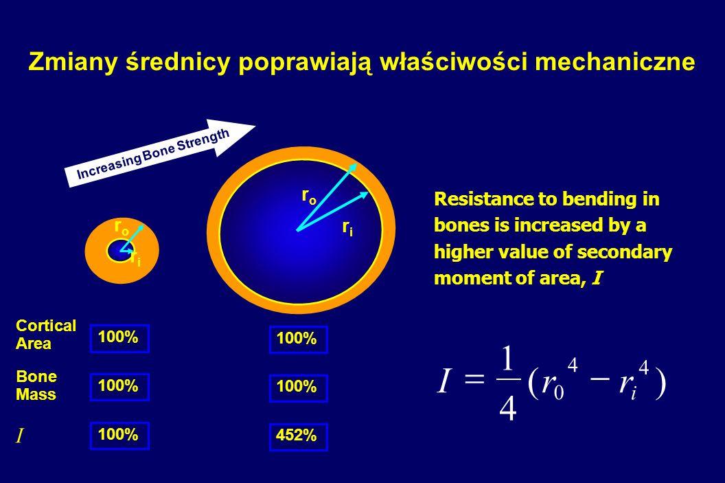 Zmiany średnicy poprawiają właściwości mechaniczne