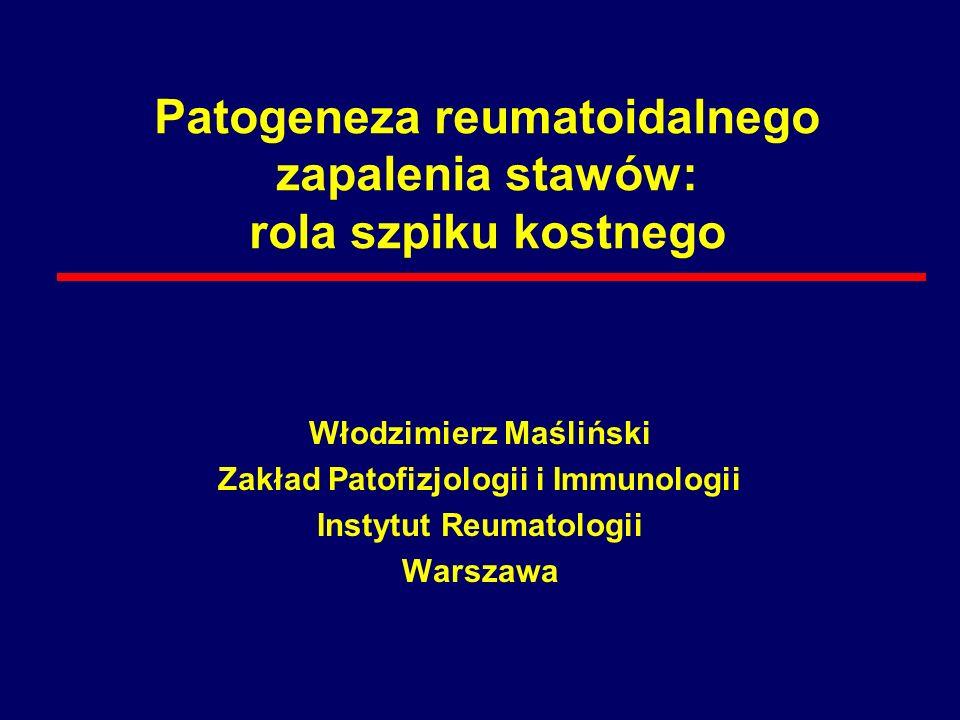 Patogeneza reumatoidalnego zapalenia stawów: rola szpiku kostnego
