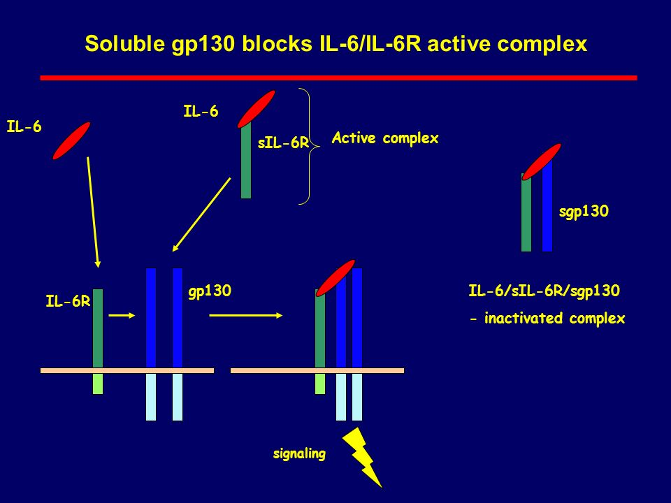 Soluble gp130 blocks IL-6/IL-6R active complex