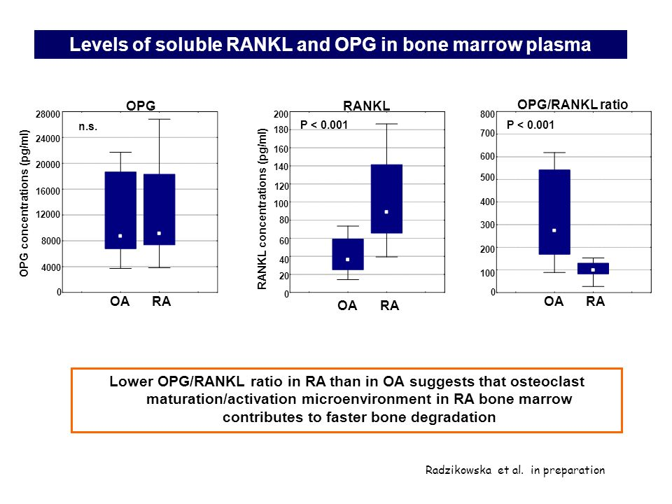Levels of soluble RANKL and OPG in bone marrow plasma