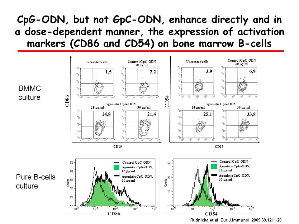 CpG-ODN, but not GpC-ODN, enhance directly and in a dose-dependent manner, the expression of activation markers (CD86 and CD54) on bone marrow B-cells