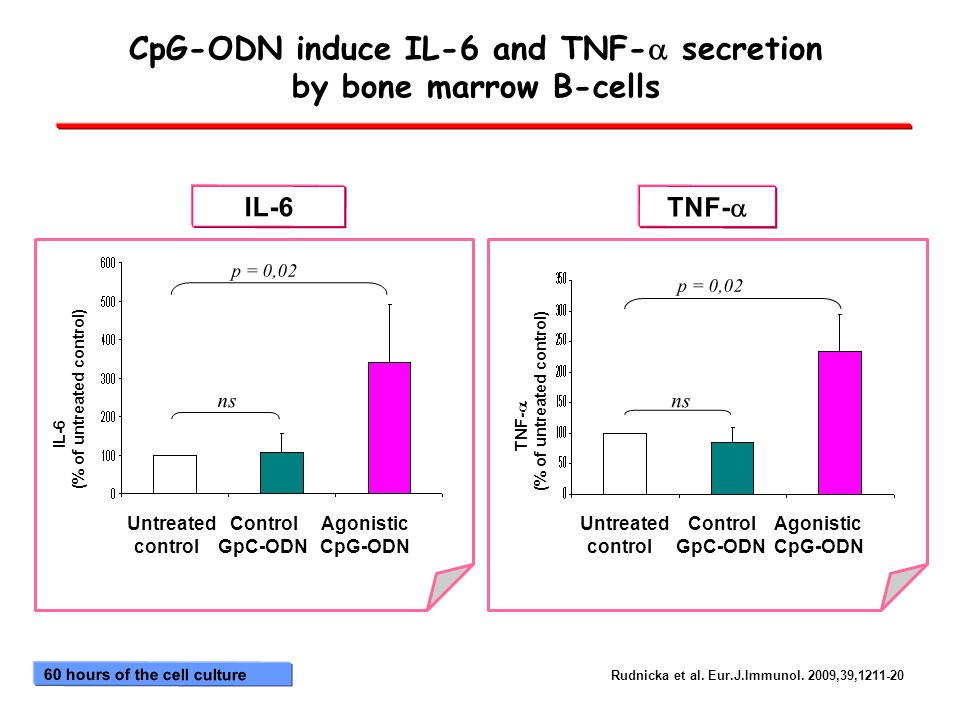 CpG-ODN induce IL-6 and TNF-a secretion by bone marrow B-cells