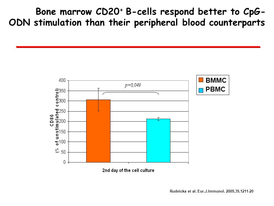 Bone marrow CD20+ B-cells respond better to CpG-ODN stimulation than their peripheral blood counterparts
