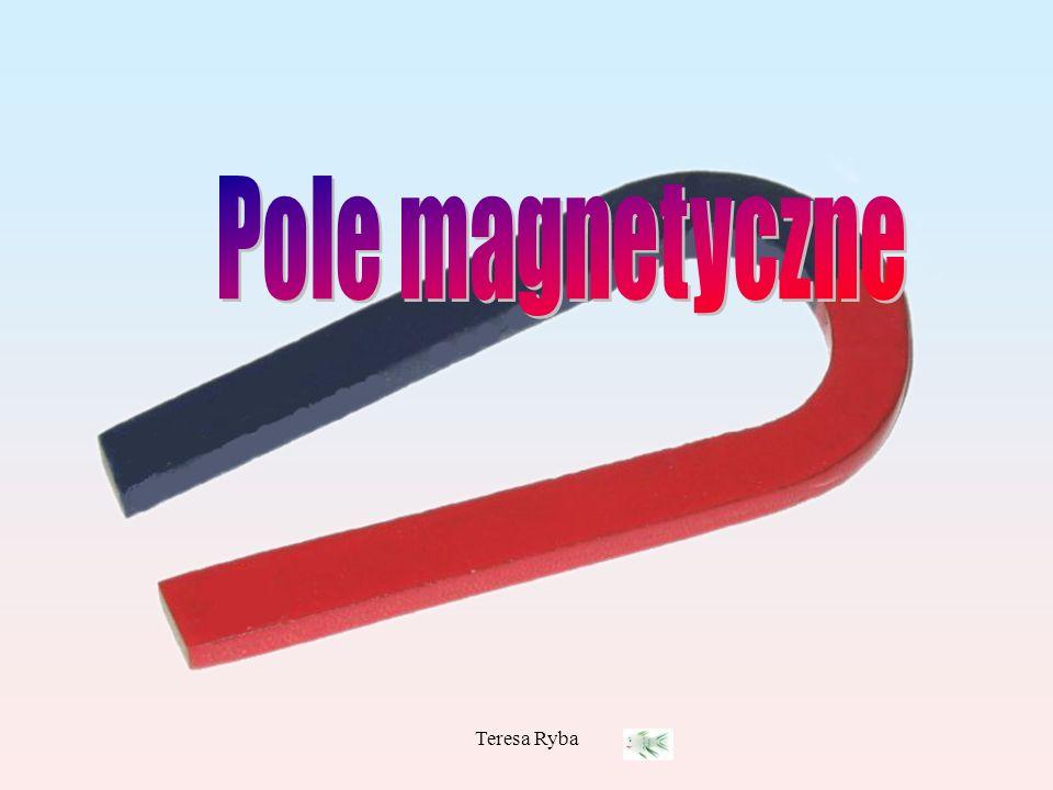 Pole magnetyczne Teresa Ryba