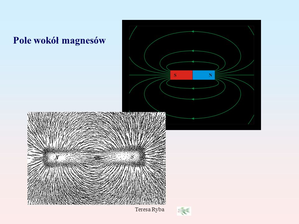 Pole wokół magnesów Teresa Ryba