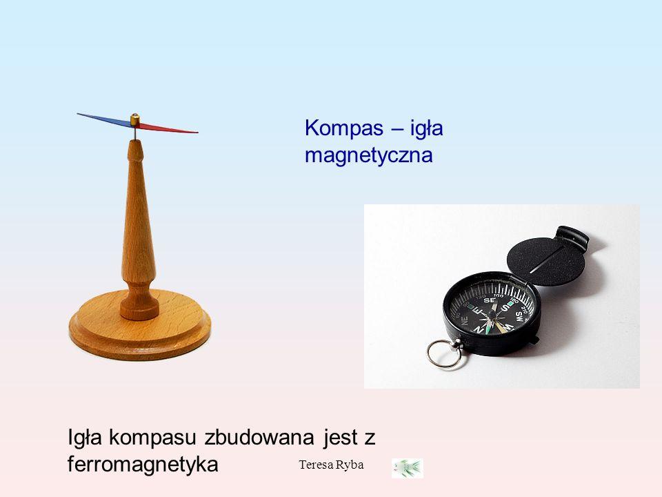 Kompas – igła magnetyczna