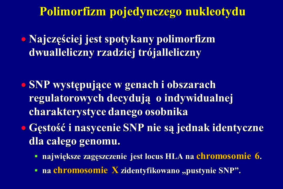 Polimorfizm pojedynczego nukleotydu