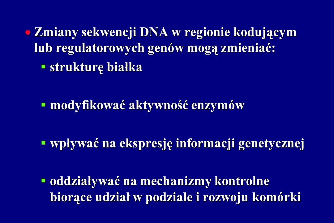Zmiany sekwencji DNA w regionie kodującym lub regulatorowych genów mogą zmieniać: