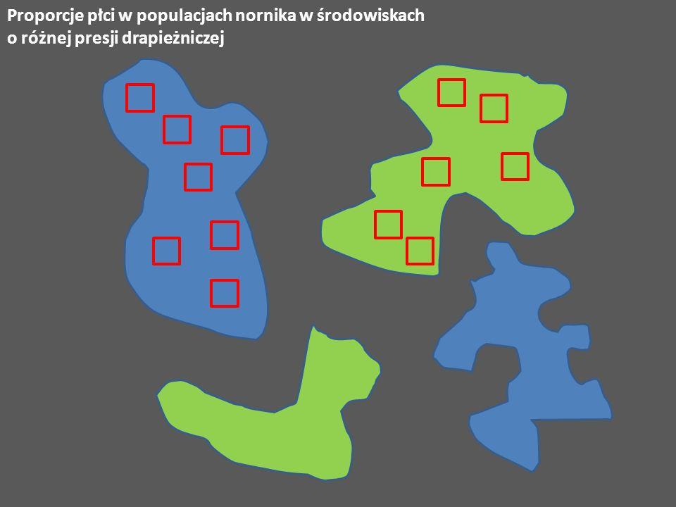 Proporcje płci w populacjach nornika w środowiskach